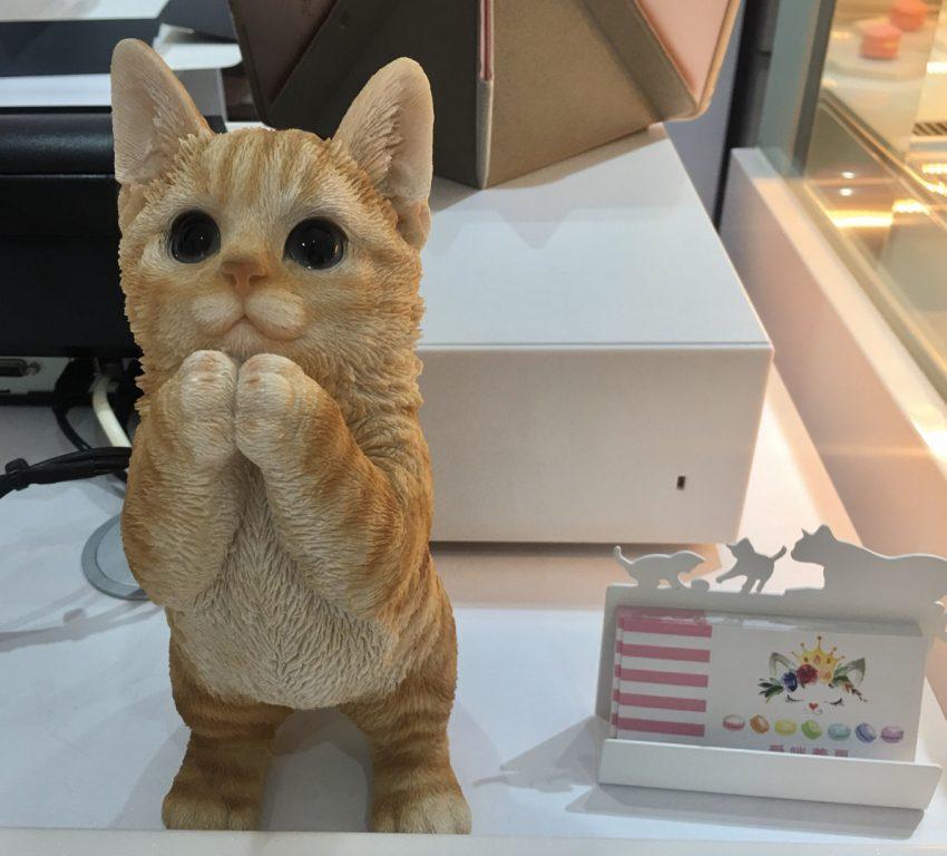 新竹竹北美食。愛咪蕾夏-手作甜點。超萌仿真貓玩偶裝飾。粉色系浪漫滿屋。情人節特選甜點屋[Miss 飛妮] @Miss 飛妮