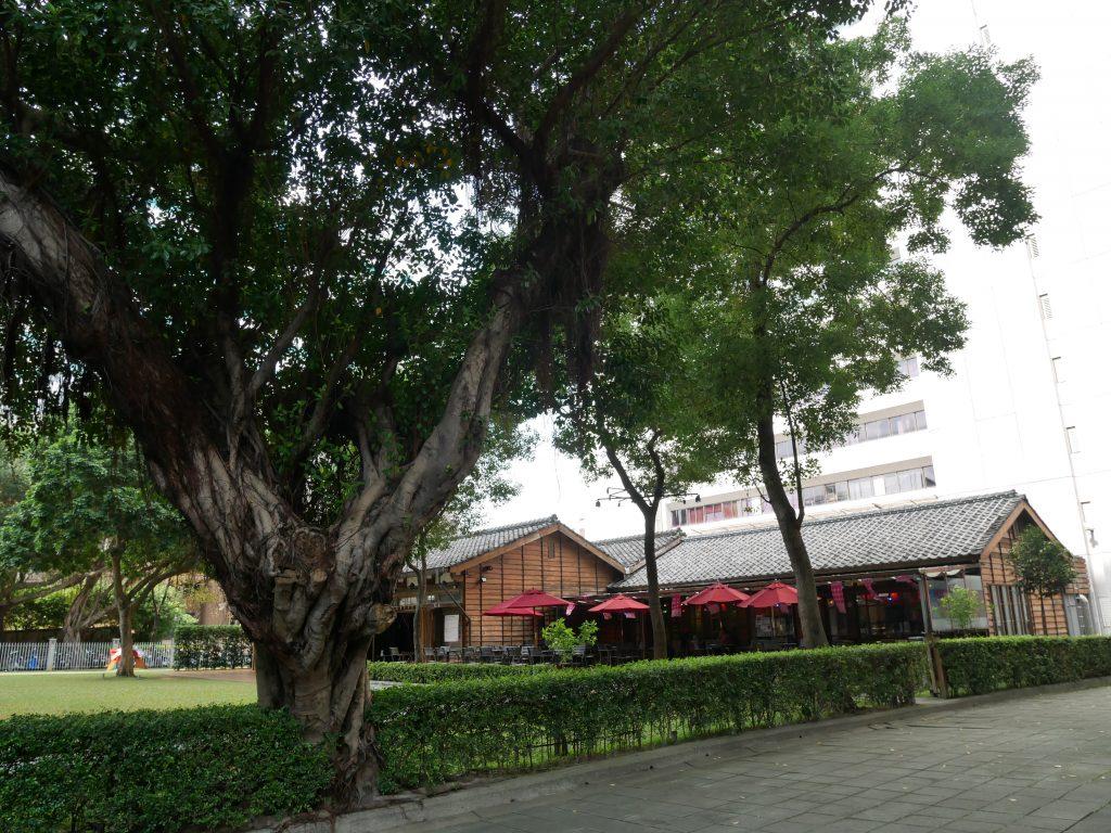 台北美食。跳舞咖啡廳。台北市區鬧中取靜的玫瑰古蹟~現代舞先驅蔡瑞月女士舞蹈研究社。捷運雙連站超棒聚餐聊天的日式老宅建築[Miss飛妮] @Miss 飛妮
