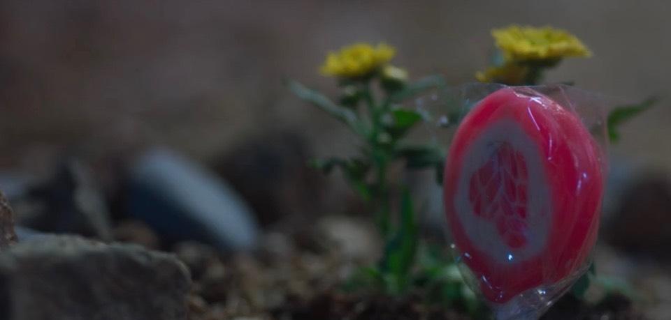 韓劇你是我的春天第13-14集。他和小女孩似乎重逢了,他把棒棒糖插進小花旁的土裡,然後轉身對她燦爛地笑著。原來兩人彼此喜歡應該在很久以前~我愛你[Miss飛妮] @Miss 飛妮